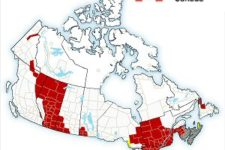 Extreme Cold Warning in Canada, skip Casinos play online